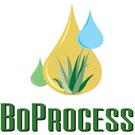 BoProcess LLC.